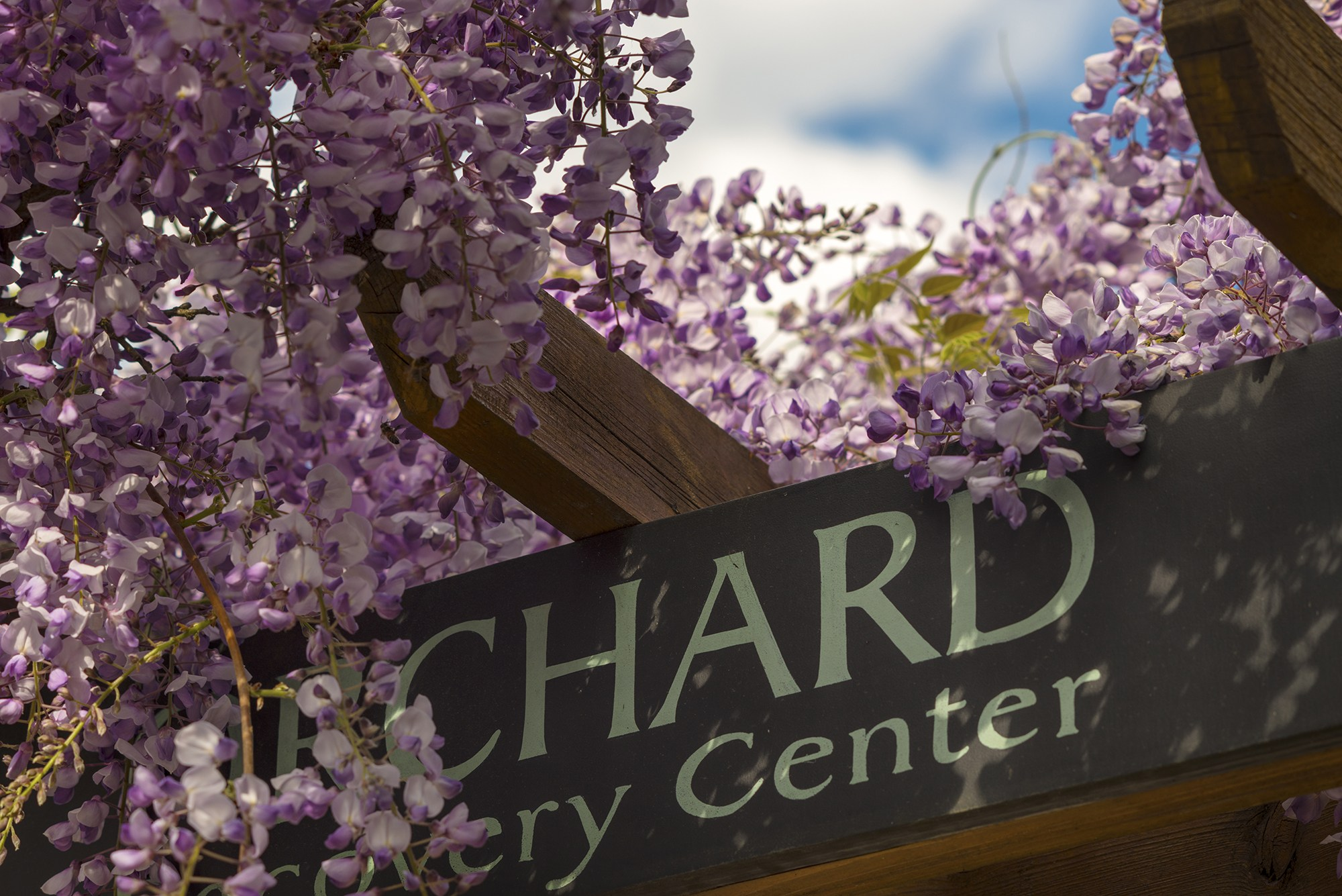 Orchard Recovery Center Administration Sign, photo copyright Jason Wilde