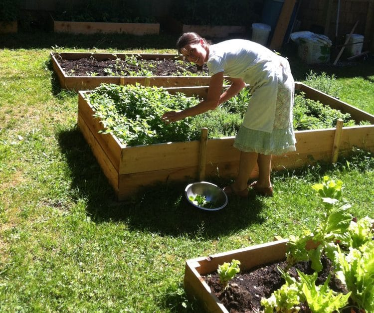 Orchard Recovery Center's organic vegetable garden provides wholesome contents for the salads.